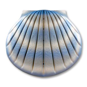Blue and white shell-shaped water cremation urn